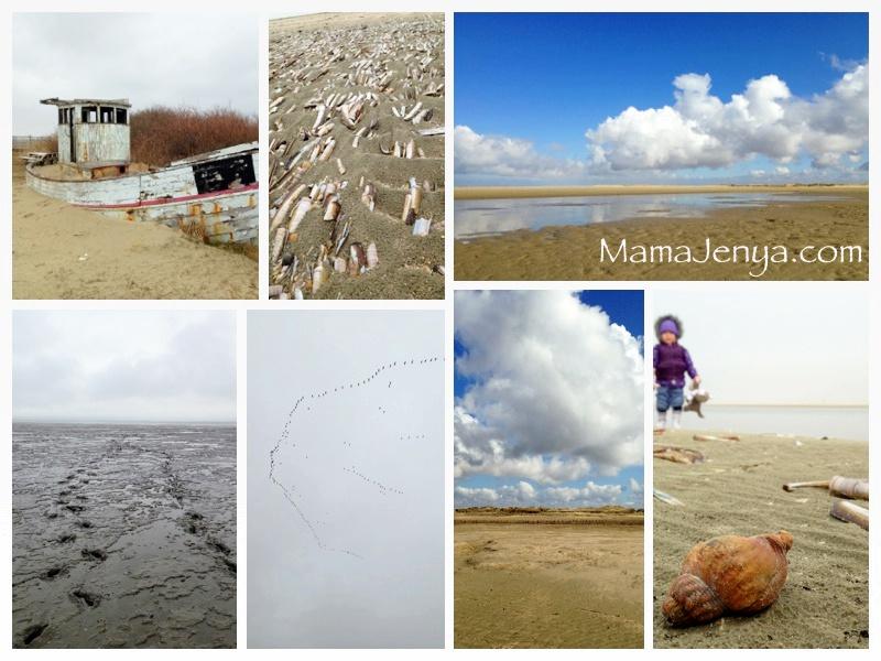 Природа в Дании